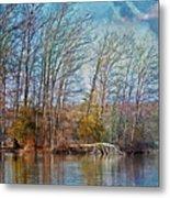 Fisherman On Burke Lake Metal Print