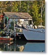 Fishhut And Invictus Metal Print