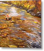 Fishing Delight Metal Print