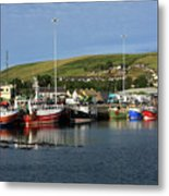 Fishing Fleet At Dingle, County Kerry, Ireland Metal Print
