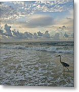 Fishing In The Morning Metal Print