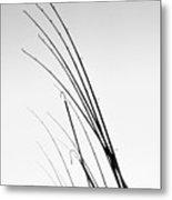 Fishing Poles - Bw Metal Print