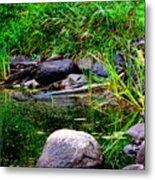 Fishing Pond Metal Print