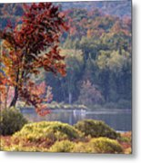 Fishing The Adirondacks Metal Print
