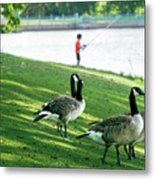Fishing With The Geese Metal Print