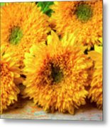 Five Exotic Sunflowers Metal Print