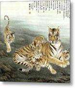 Five Tigers Metal Print