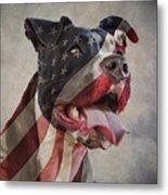 Flag Dog Metal Print