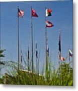 Flags Flags Flags Metal Print