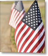 Flags Line Up Metal Print