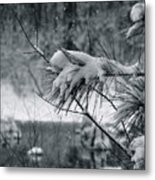 Flakes In Action Metal Print