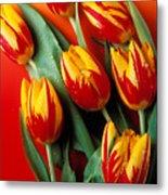 Flame Tulips Metal Print by Garry Gay