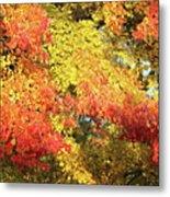 Flaming Autumn Leaves Art Metal Print