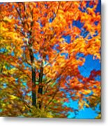 Flaming Maple - Paint Metal Print
