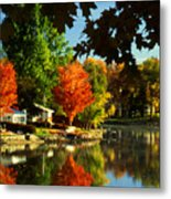Flaming Maples Metal Print