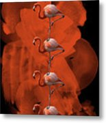 Flamingo Balance - 1 Metal Print