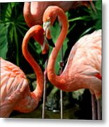 Flamingo Heart Metal Print