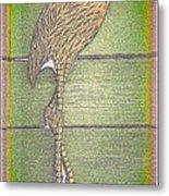 Flamingo II Metal Print