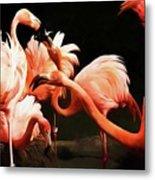 Flamingo Kisses Metal Print