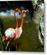 Flamingo Pair Metal Print