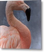 Flamingo Profile Metal Print