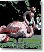 Flamingos I Metal Print