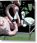 Flamingos II Metal Print