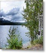 Flathead Lake 5 Metal Print