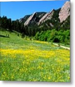 Flatirons And Yellow Meadow Metal Print