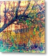Fletcher Lake  14 Metal Print