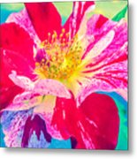 Fleurie Peppermint Rose High Key Metal Print