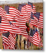 Flight 93 Flags Metal Print
