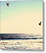 Flight Of Dawn Metal Print