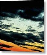 Flight Of The Geese Metal Print