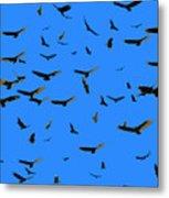 Flight Of The Vultures Metal Print