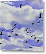 Flight Over Lake Metal Print