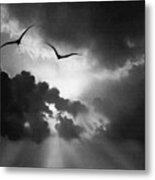 Flight To Glory Metal Print
