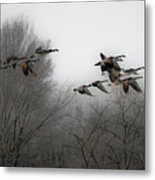 Flight To The Fields Metal Print