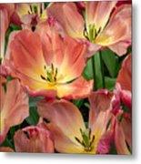 Flighty Tulips Metal Print