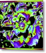 Flin Flon Rose Metal Print