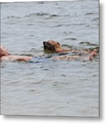 Floating In The Sea Metal Print