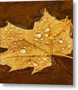 Floating Maple Leaf Txt Metal Print