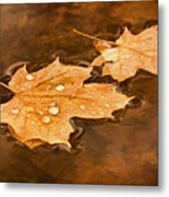 Floating Maple Leaves Pnt Metal Print