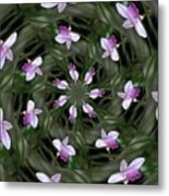 Floating Orchids Metal Print