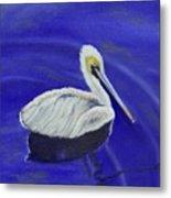 Floating Pelican Metal Print