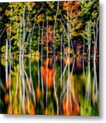 Flood Metal Print