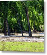 Flood Plain Metal Print