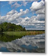 Flooded Low Country Rice Field Metal Print