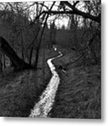 Flooded Trail Metal Print