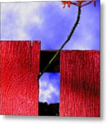 Flora And The Red Fence Metal Print